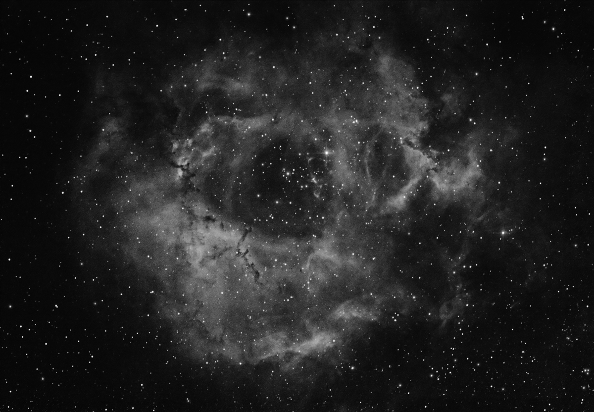 Rosette in ha. 22x5mins, Canon 450D + Baader 7nm ha filter.
