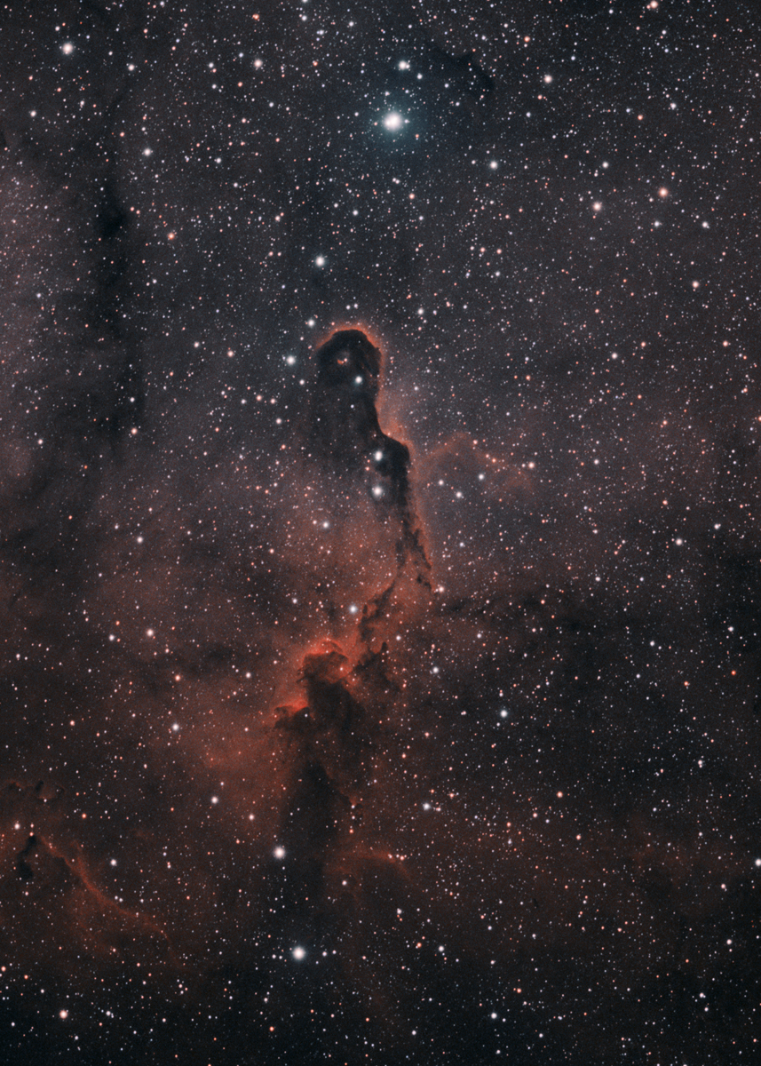 LDN1105 (Elephants Trunk nebula, part of IC 1396)