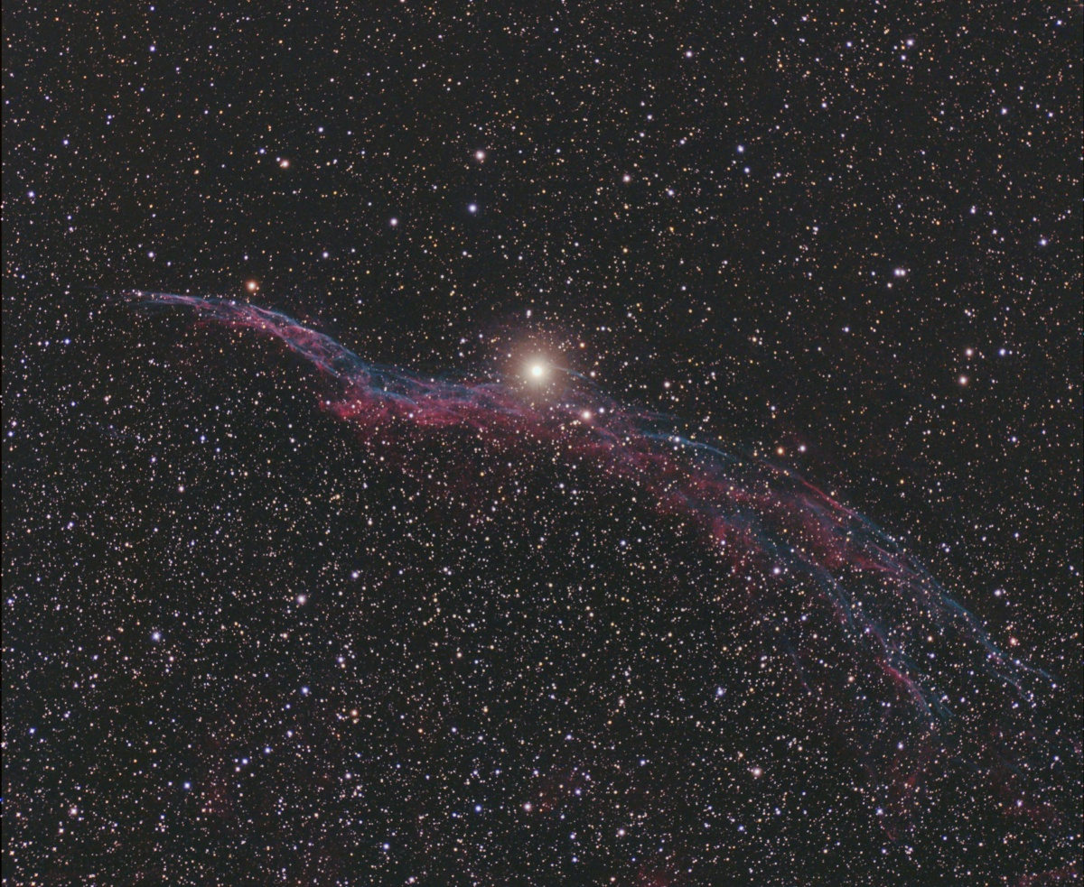 Witches Broom 2 7 11 Rother Valley 18 x 5mins 6   8 degrees CROP
