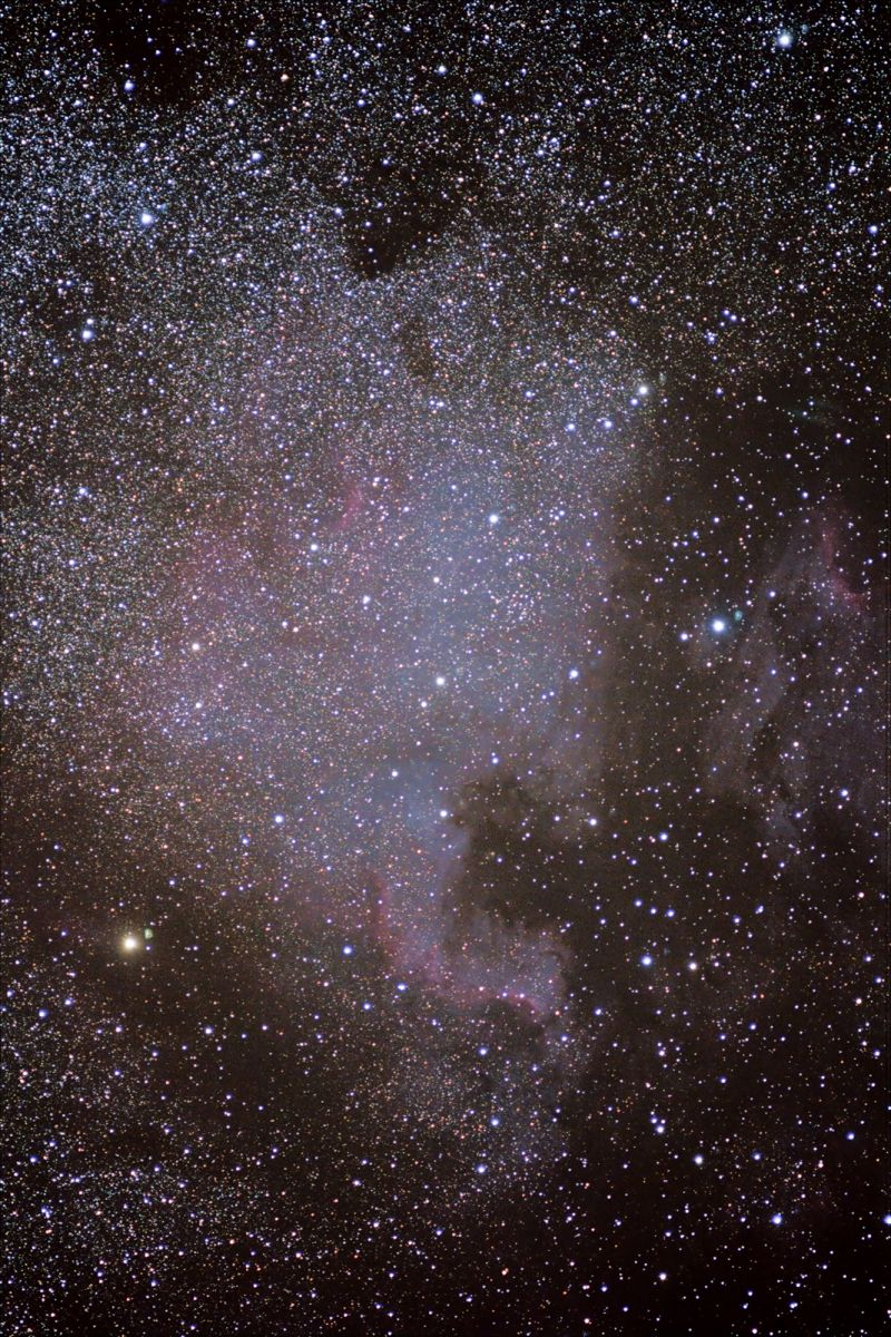 NGC7000  North American Nebula