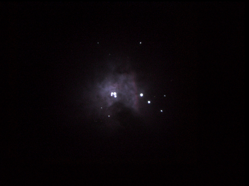 Central part of the Orion Nebula showing the Trapezium 5x 10s, ISO 400, unguided, stacked in Registax and tweaked in Photoshop  Orion Optics Europa 200 Hi-Lux EQ5 Meade 4000 26mm Canon Powershot G3