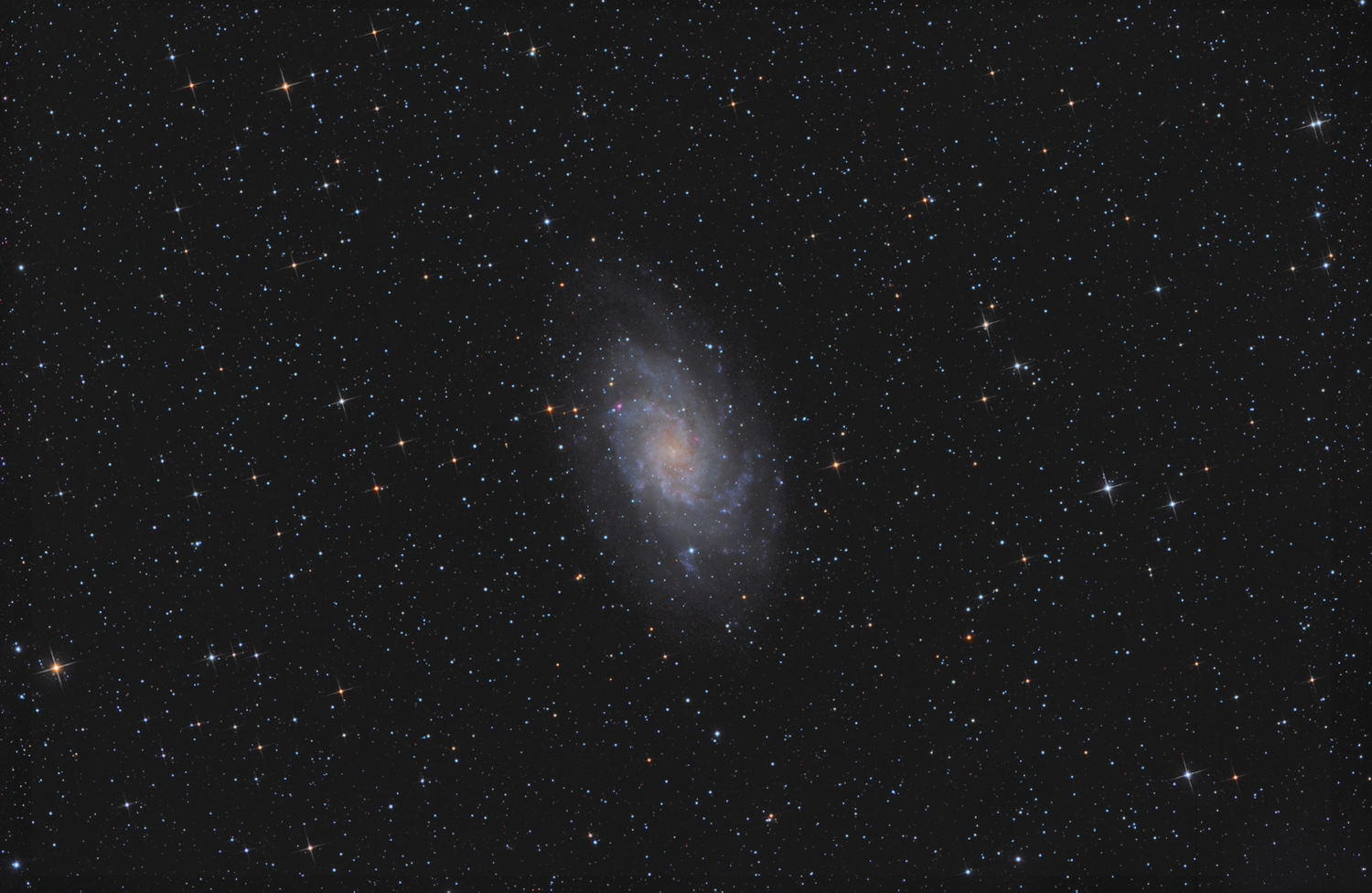 M33 widefield olly 2