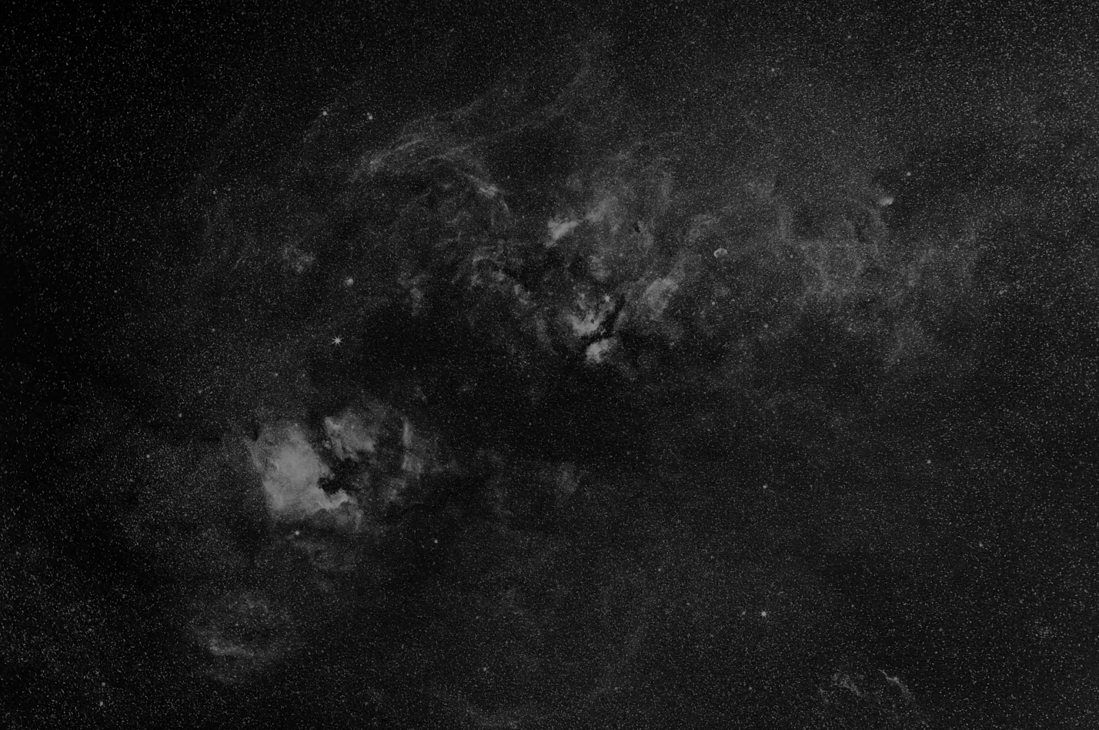 Cygnus Widefield 50mm - Ha