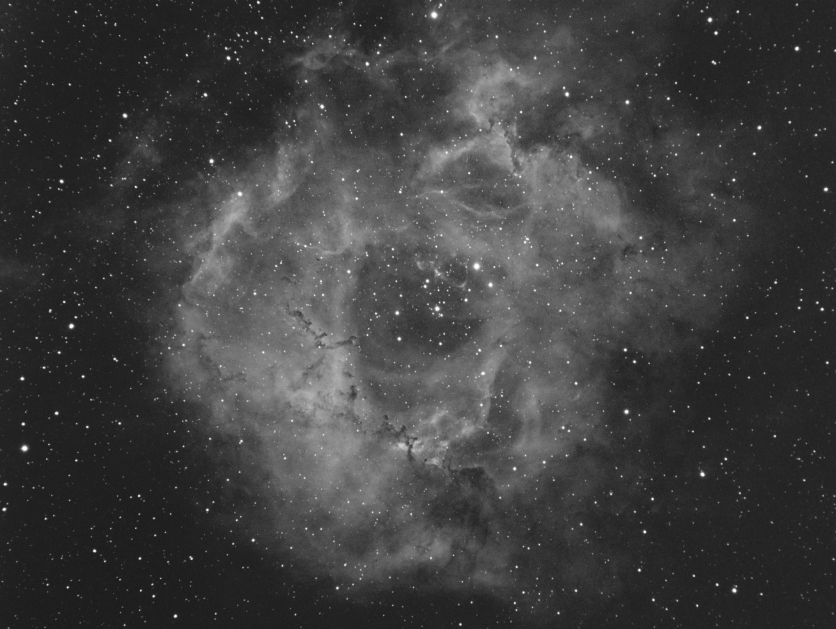 NGC2244 11x600 7nm ha, 0.8 flattener,  ED80, guided with PHD. stacked DSS, 080311