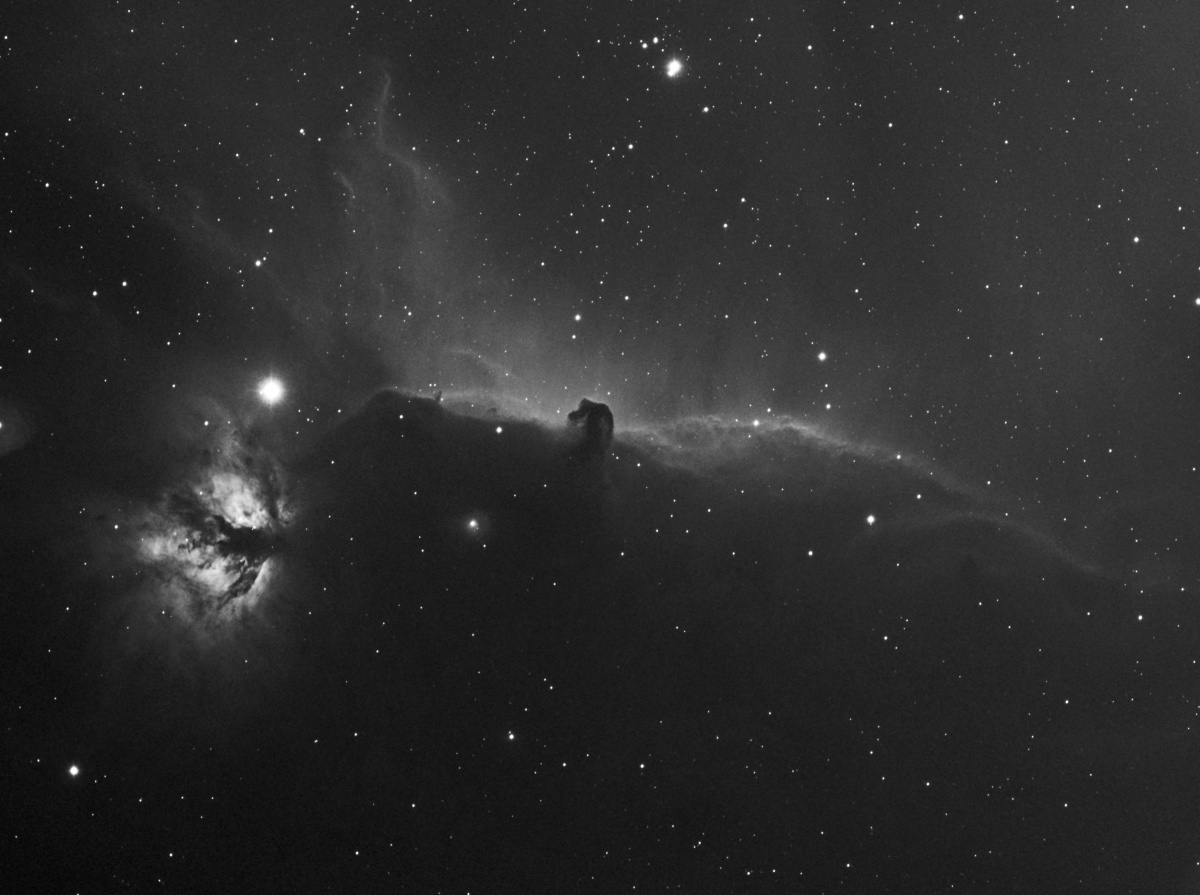 IC434 9x600 QSI ED80, 7nm Ha, 0.8fr230311. Should have done a lot more, but trees in the way!