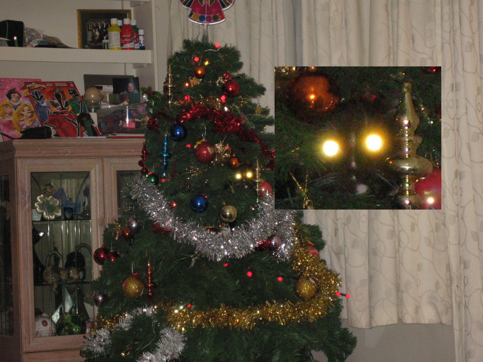 My Cat Declan in My Christmas Tree - Zoomed