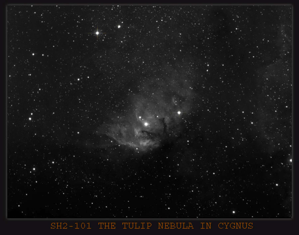 Sh2-101 The Tulip Nebula in Cygnus, a very faint Nebula , needing  loads of exposure time ,this would have been 25x8 min Subs , using the H-Alpha Filter . Imaging scope Equinox 120 with 6.3 reducer ,Guide scope Equinox 80 . Guide camera QHY5 and PHD Guidi