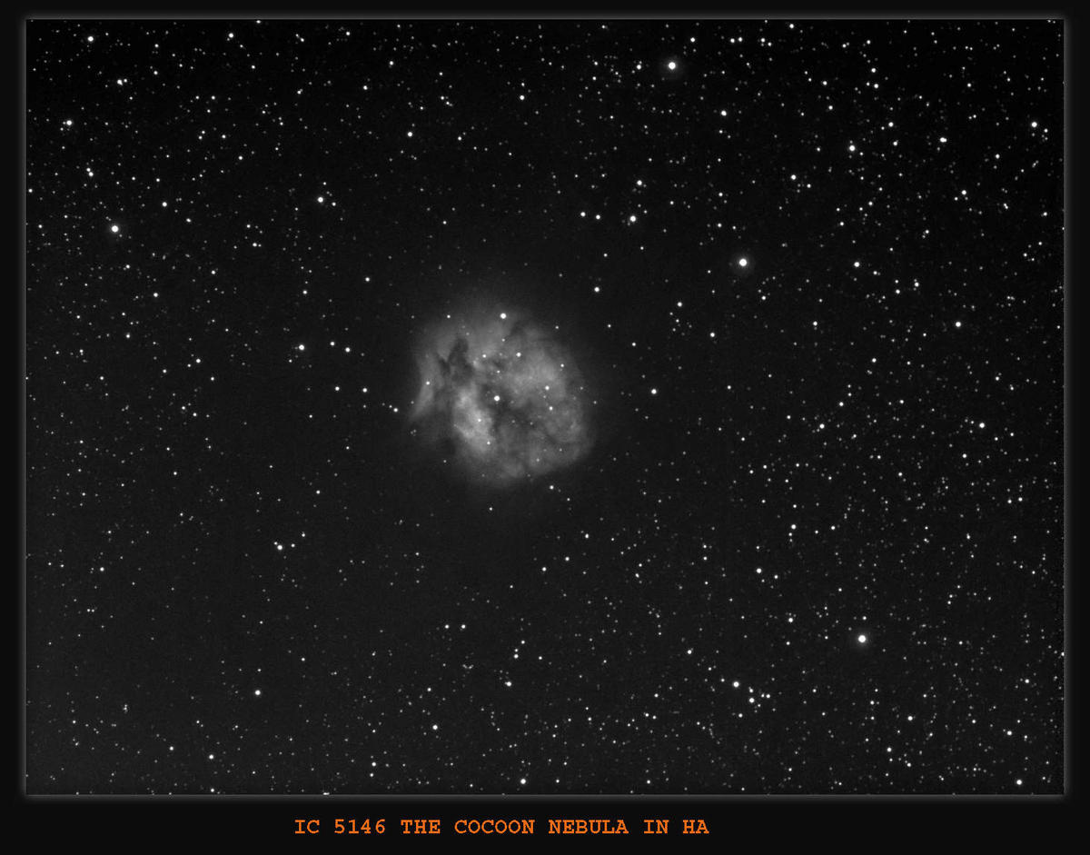 IC5146 The Cocoon Nebula in Cygnus. Imaging Scope Equinox80 . H-Alpha Filter 6nm used, Guide Scope Equinox120 . Guide Camera QHY5 and PHD Guiding , Processed in Maxim and Photoshop.