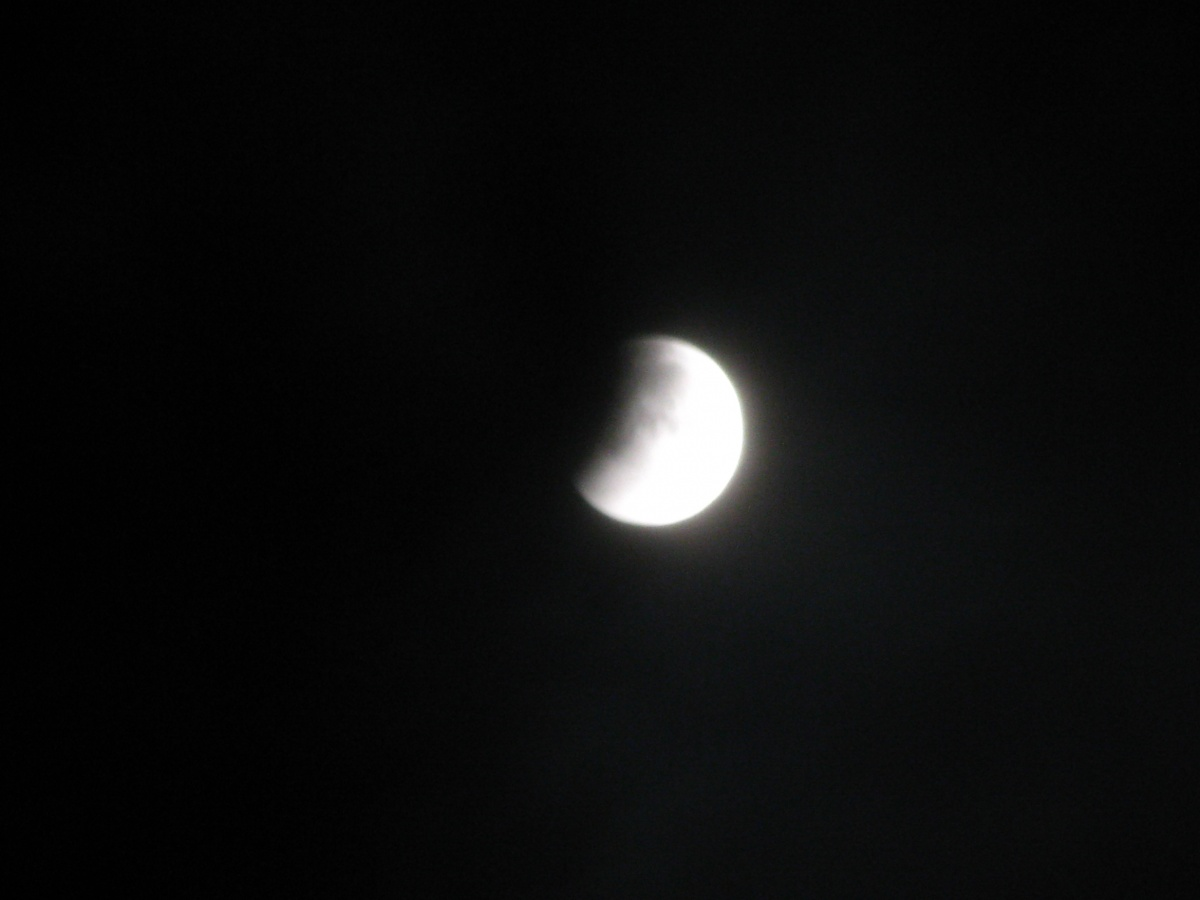 Lunar Eclipse Dec 2010