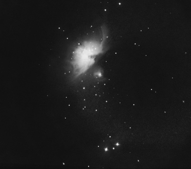orion march 1st 48 lights no dark crop b&w
