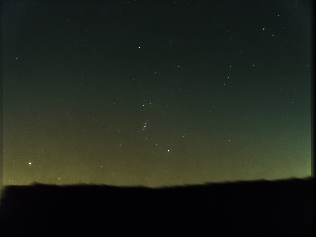widefield orion over hedge