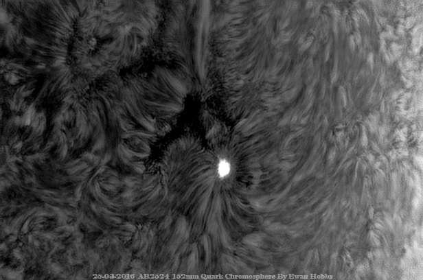 AR2524 25-03-2016 Inverted.png