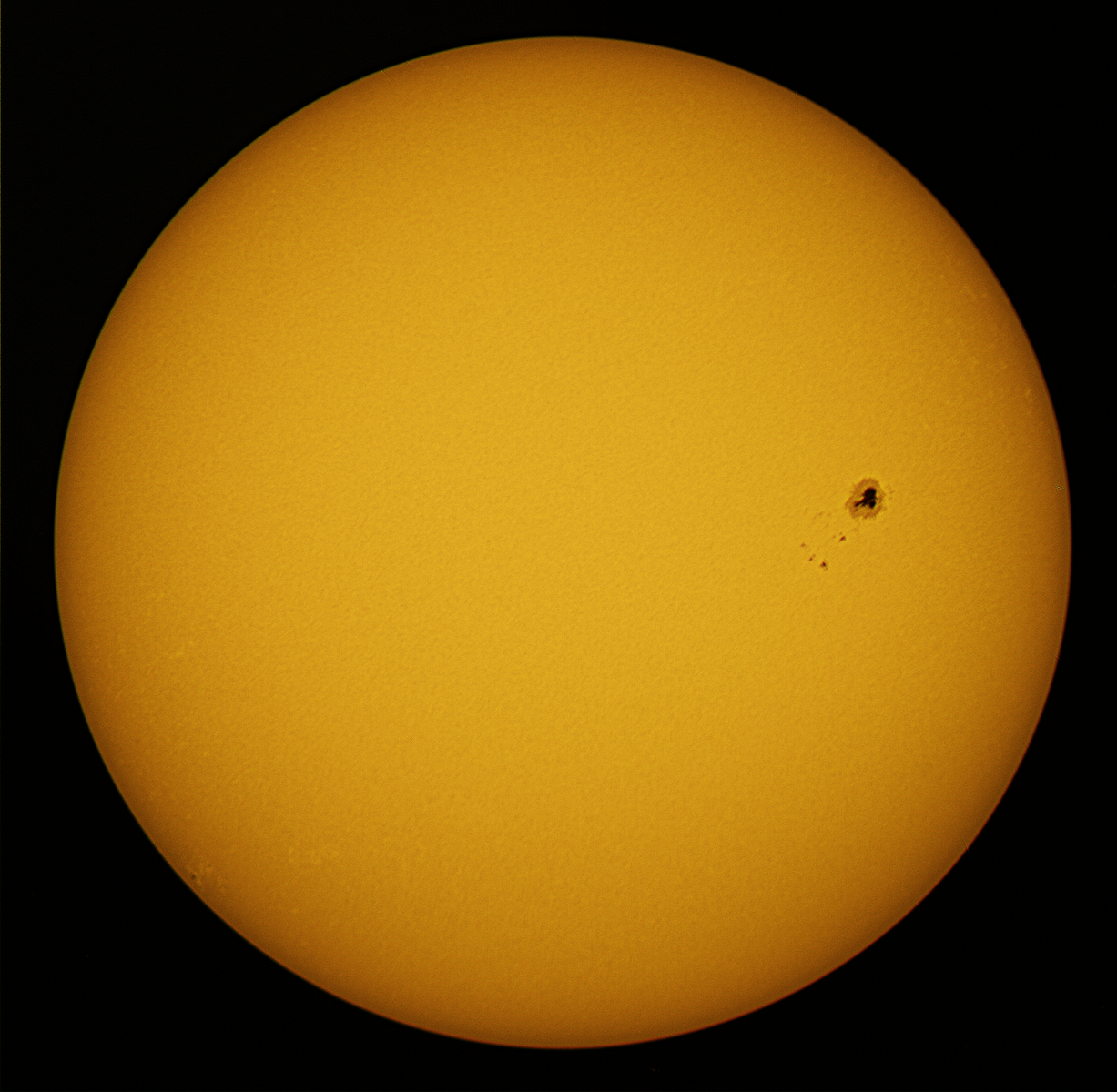 sol 16-4-16-10.30.the monster.