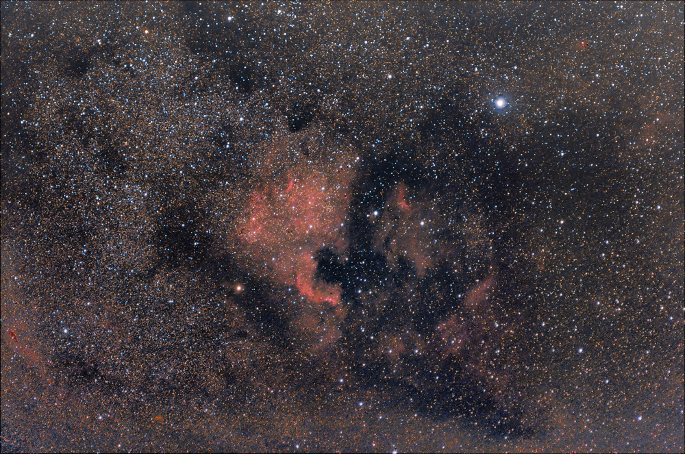 North America Nebula.png