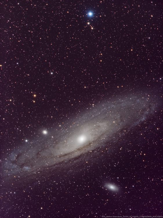 M31_161005_65_ASI1600_Lx76@60and30s_RGBx20@60s.png