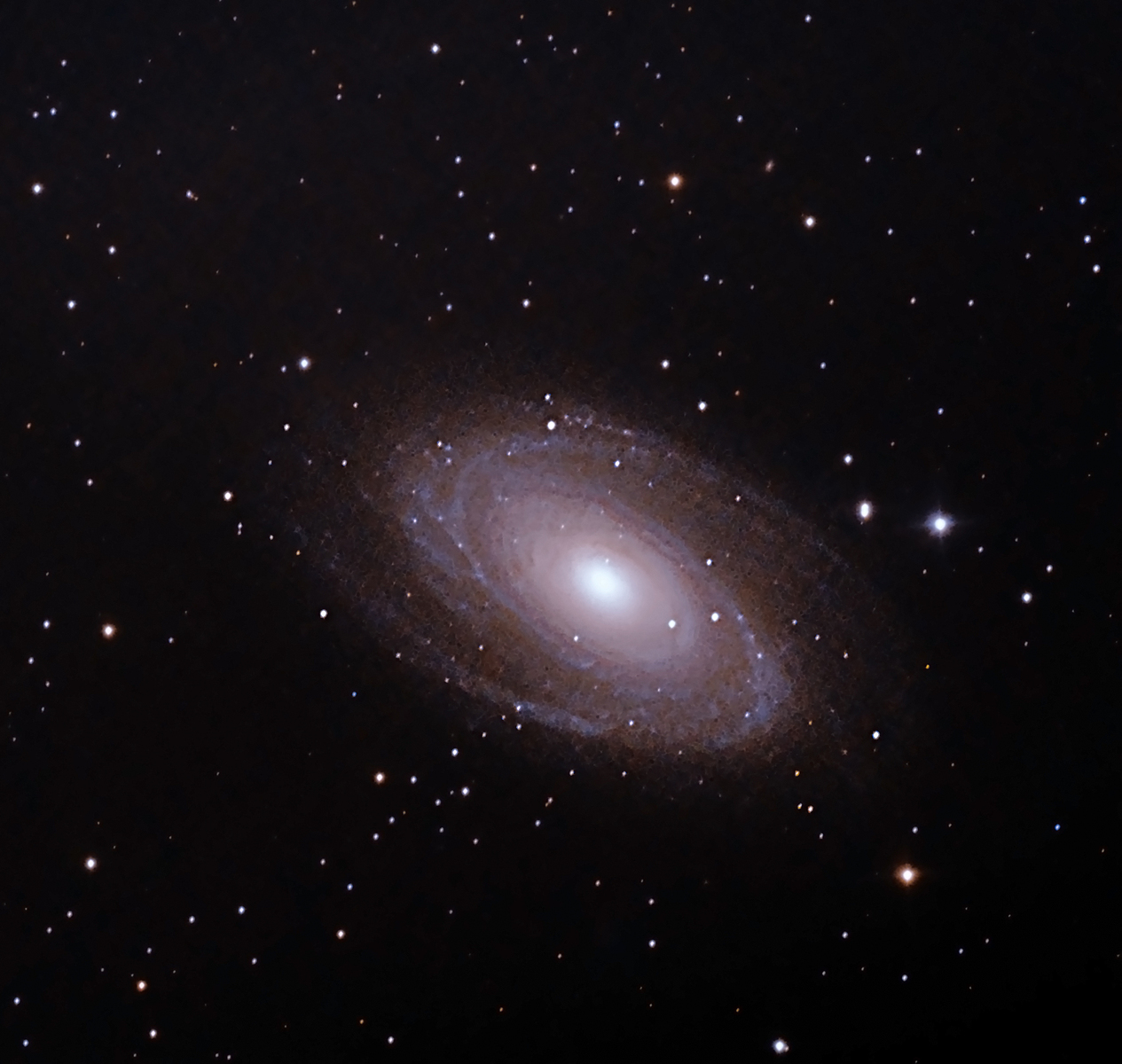 M81 crop Nik collection 2.jpg