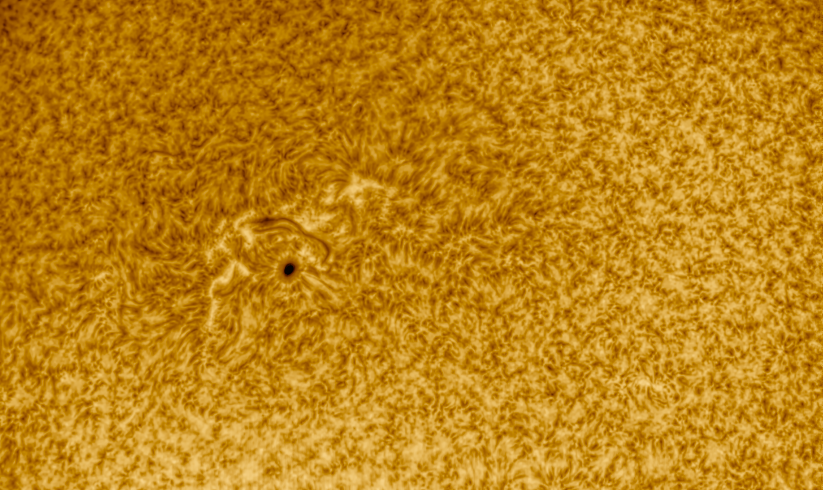 AR264824-2-17widecol.png
