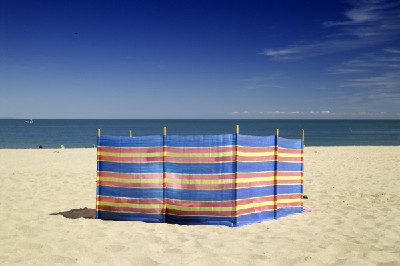 windbreak.jpg.2bfe469bc4be36b5c7765e8f39277df5.jpg