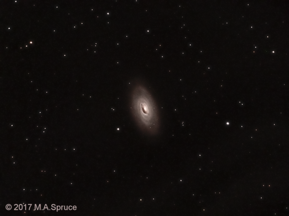 M64 - Watermarked - full resolution.png