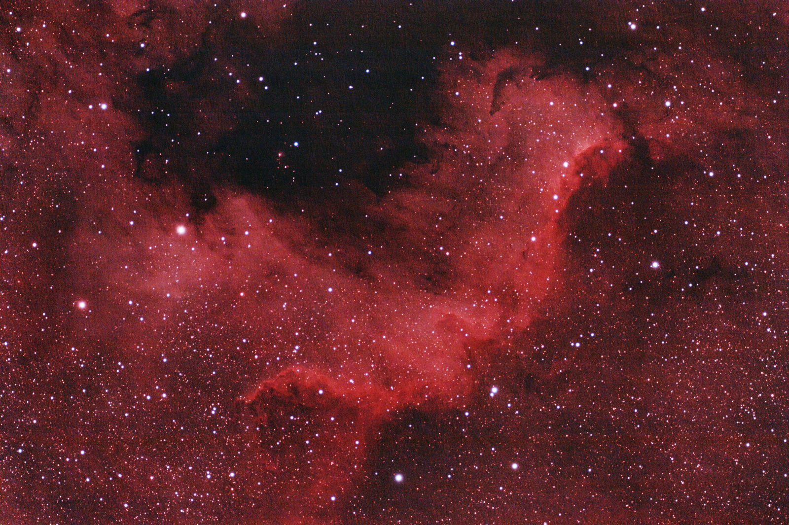 North_American nebula reprocessed