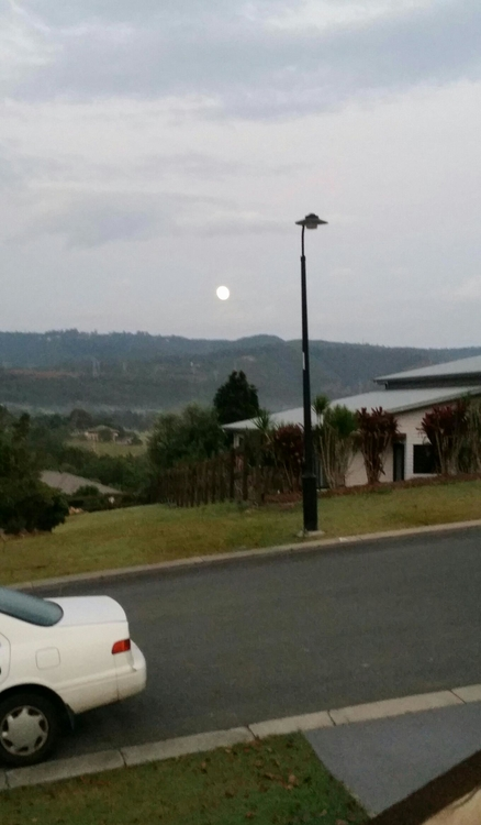 Moon setting over Tamborine.jpg