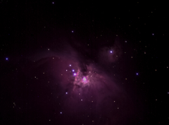 M42 from Sharpcap live stacking session