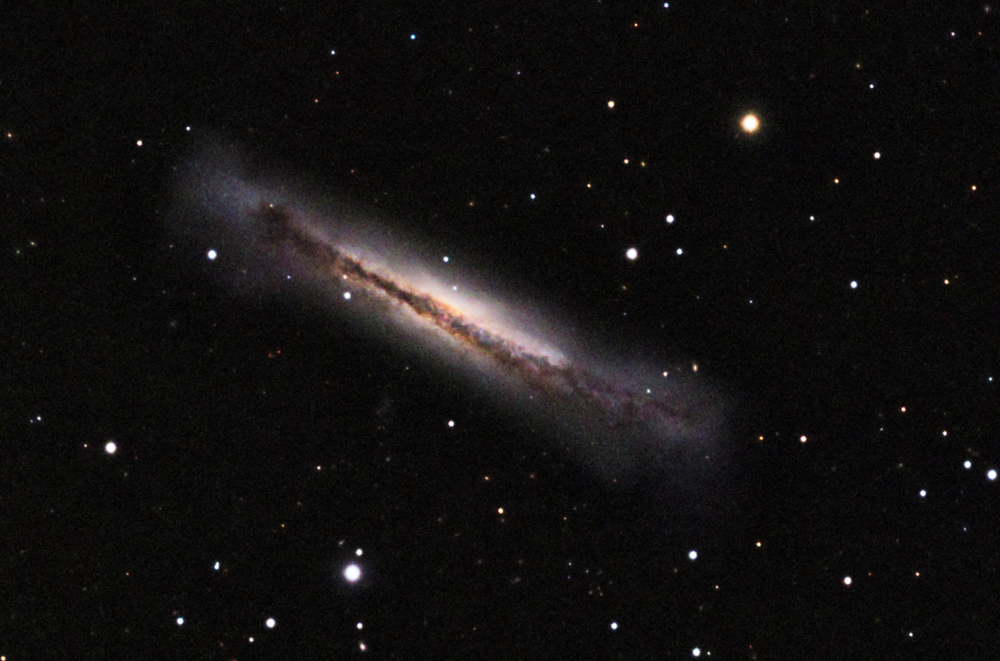 NGC3628 The Hamburger Galaxy April 2017 TOA150B QSI690.jpg