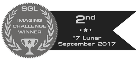 sgl_imaging_challenge_badge_7_silver.png.d5b1f76a1a659dd998df763596e39eac.png