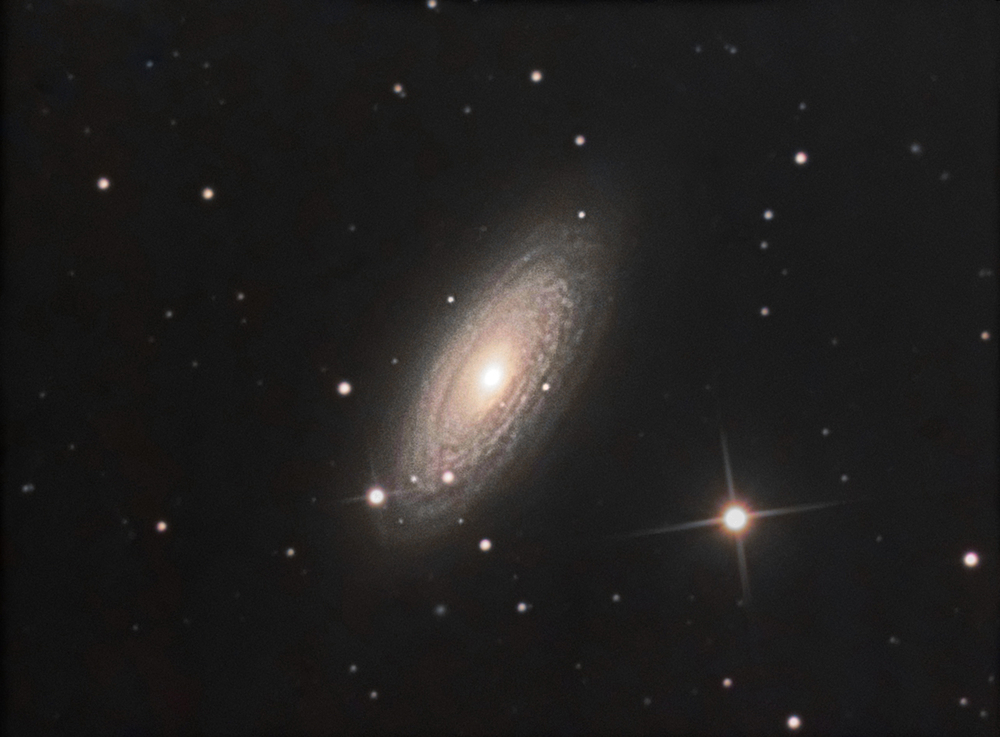 Tiger eye galaxy NGC 2841 LRGB-3.jpg