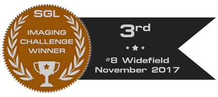 sgl_imaging_challenge_badge_8_bronze.png.e91cd5f3e3ef621a379e261cd9870be9.png