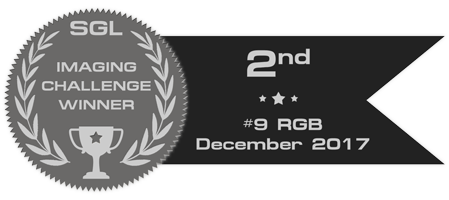 sgl_imaging_challenge_badge_9_silver.png.ca9b48078e8548d6c70070df957fd784.png