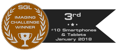 sgl_imaging_challenge_badge_10_bronze.png.7f7fcabba1815cdafe332c9865be1937.png