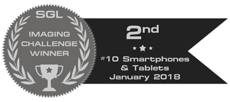 sgl_imaging_challenge_badge_10_silver.png.bcfbe8b3446183a1829a5432d555142b.png