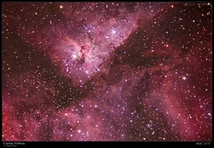 Carina Nebula at 1280mm (~59x39 arc-minutes FOV)