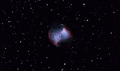 m27 9mins 8sct RAW uhc 1600 PS.jpg