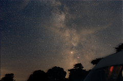 Milky Way Cairds trees Finished OAS size.png