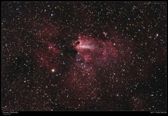 The Swan Nebula M17 in natural color