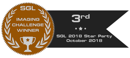 sgl_imaging_challenge_badge_sgl_2018_sp_bronze.png.ec5a27df94fe1ce45bc4abc59f943059.png
