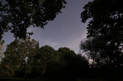 Backyard 2 Time-Lapse Short