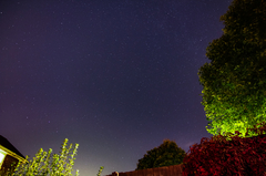 Backyard 1 Time-Lapse Short