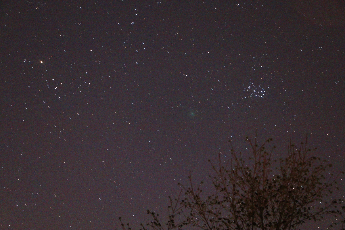 Comet 46P Wirtanen with Pleiades and Hyades 16.12.2016 01.30UT .JPG