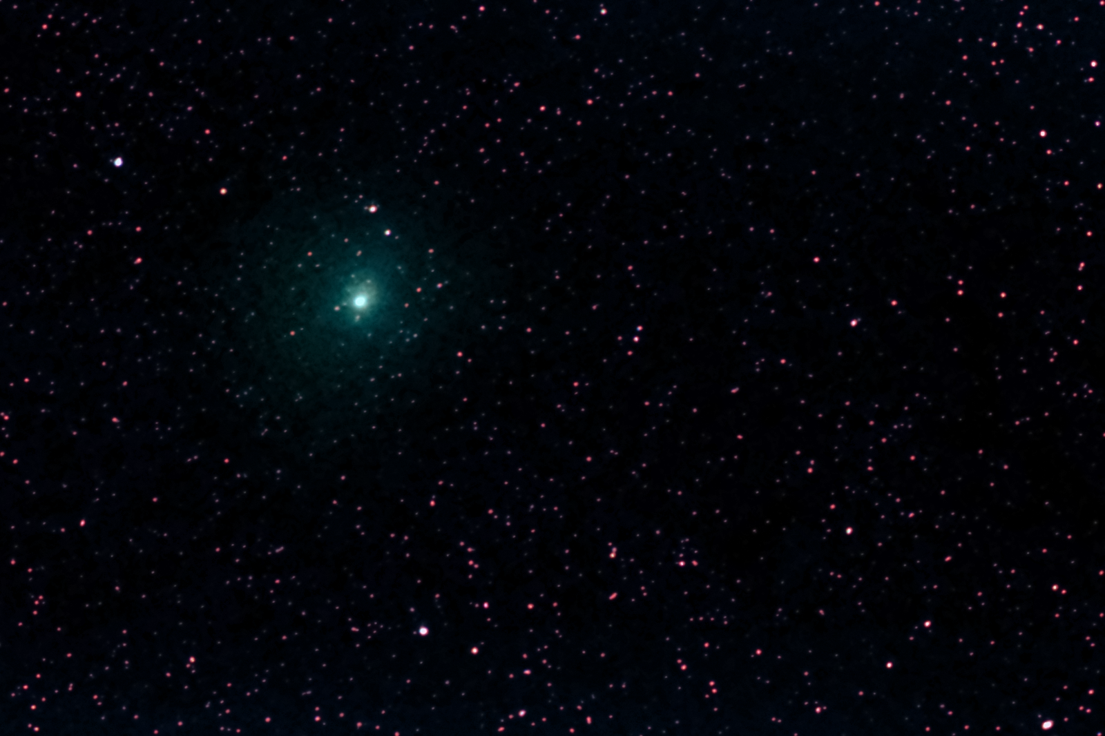 Comet 46P Wirtanen January 2019 -03.png