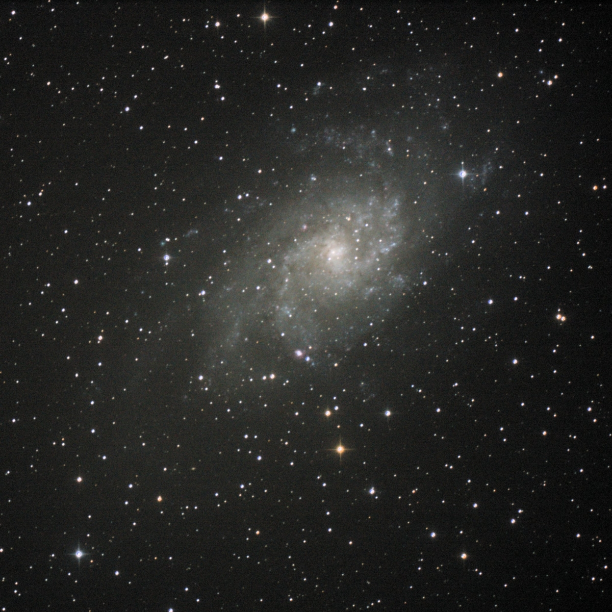 2018-09-07 Triangulum Galaxy (M33)