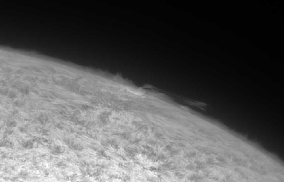 AR2733-on-limb-30-01-19.png.f03ae76e955c3b7d43f49127d680299b.png