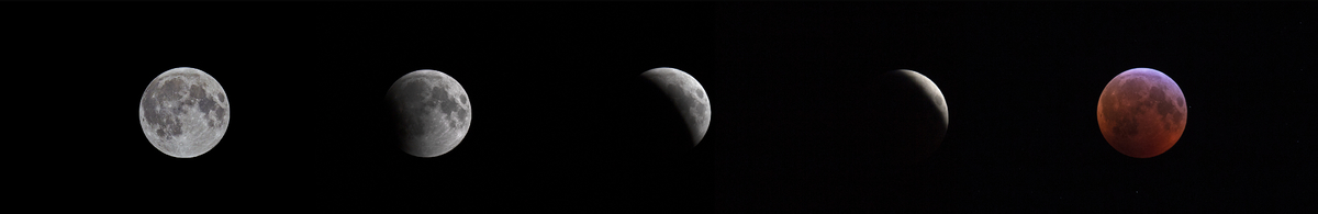 Moon_2019_01_21_Lunar_Phases_Eclipse.jpg