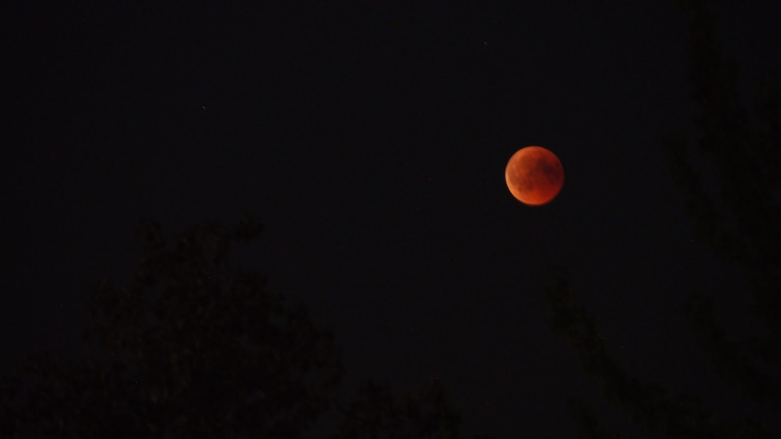 Red_Moon_27-7-2018_Nijmegen_The_Netherlands.JPG