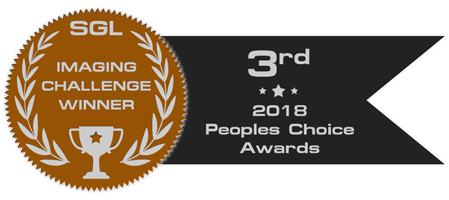 peoples_choice_2018_badge_bronze.png.845025315cdcce79341622e14d5f8607.png