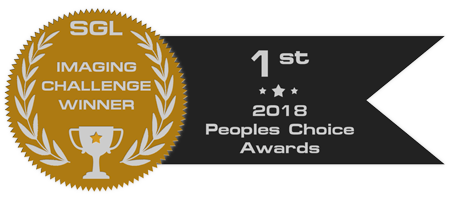 peoples_choice_2018_badge_gold.png.c52f9c4361f2820e985e2bad28256467.png