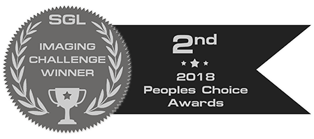 peoples_choice_2018_badge_silver.png.ebc24e29bcd9accf679151755b0c3f68.png