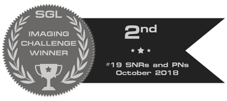 sgl_imaging_challenge_badge_19_silver.png.8d96e7863c4236605fb5503a9cd74a4c.png